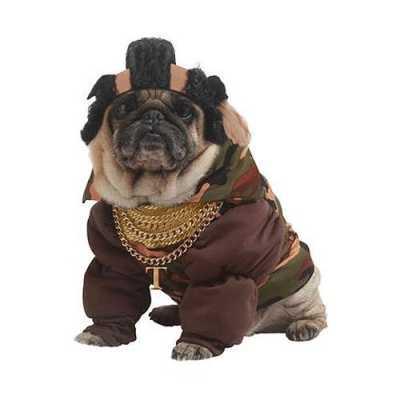 B.a. carnavalskleding honden