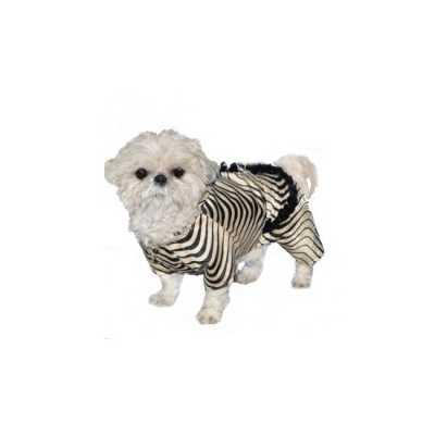 Honden zebra outfit