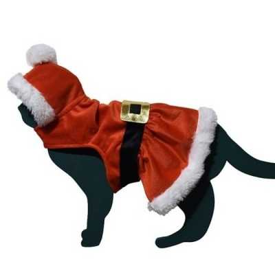 Kerstman outfitje feest outfit kat/poes