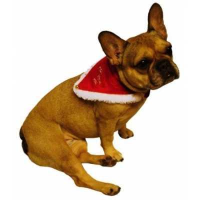 Kerstmannen halsband huisdieren