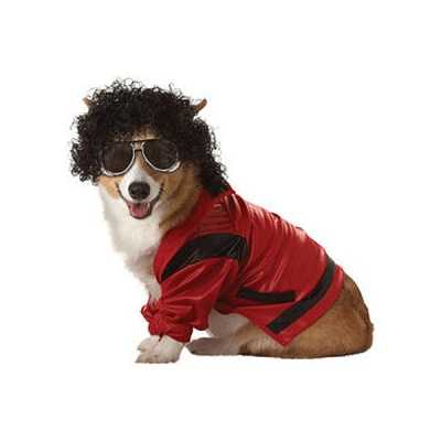 Michael jackson honden outfitje